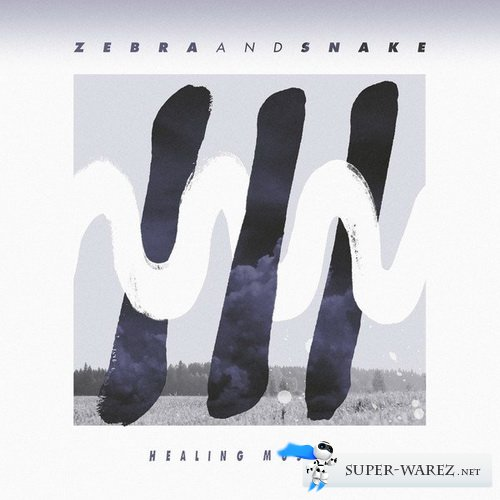 Zebra And Snake - Healing Music (2012)