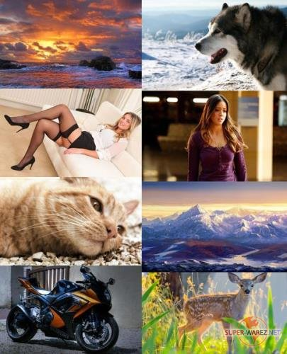 Wallpapers Mix №639