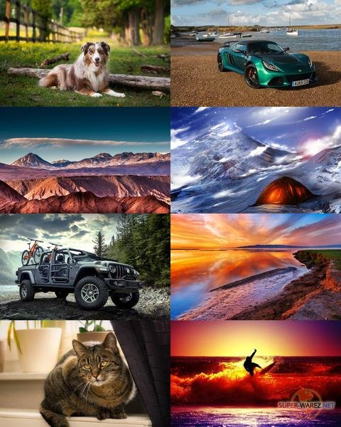 Wallpapers Mix №738