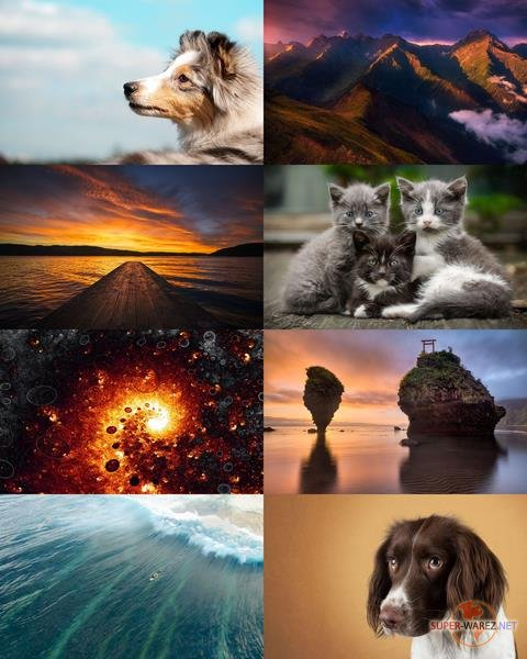 Wallpapers Mix №777